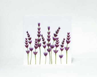 Lavender greetings card for Birthday, Invitations, Thank you, Friends, Family, Colleague