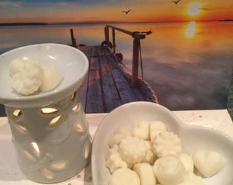 Caribbean Coconut  - Highly Fragranced Soy Wax Melts