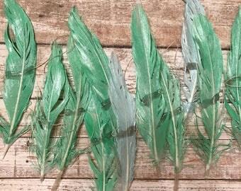 SEAFOAM + MERMAID .. Feather Garland, Feather Strand, Wall Hanging, Backdrop, Boho, Gypsy, Feathers