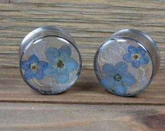 Forget Me Not Lace Plugs Real Flower Plugs Pair Natural Flowers Resin Double Flare Single Flare Spring Summer Unique Custom Nature Gauge