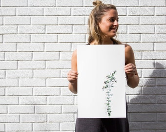 Eucalyptus-Archival-Cold Press-Minimalistic-Photographic Print-12 x18 and 24 x 36