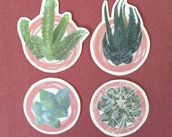 Succulent Sticker Set - 4 pieces
