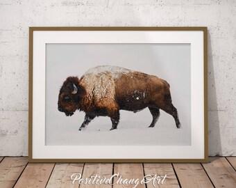 Buffalo Print, Bison Print, Buffalo, Bison, Buffalo Wall Art, Bison Art, Buffalo Art, Printable Buffalo, Buffalo Photography, Buffalo Snow