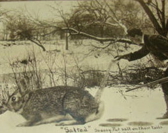 SALE Interesting RPPC Vintage Postcard (Man Hunting A Hare/Rabbit)