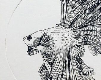 Beta Fish print, Fish illustration, fish print, nautical fish print, nautical wall art, original print, intaglio print, Beta fish, fish