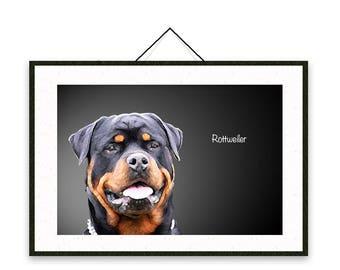 Rottweiler - Dog breed poster, wall sticker, nursery decor, dog print, wall print, nursery print, shabby print   Tropparoba 100% made Italy