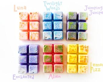 Designer Wax Melt Clamshells (Set of 6 - 13.8 Oz.) - Designer Fragrance Dupes - Lush Dupes - Bath & Body Works Dupes - Designer Dupes - Wax