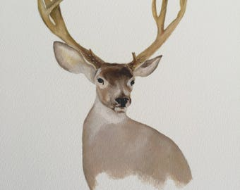 White-Tailed Deer Print