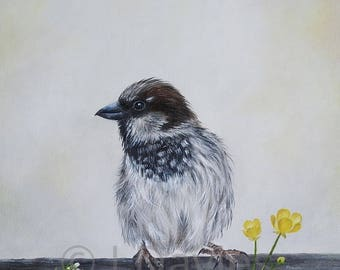 Sparrow print, sparrow artwork, sparrow painting, bird print, british bird print