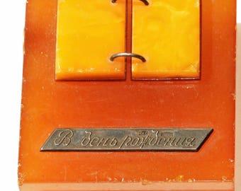 BIRTHDAY Present Amber Book Vintage made in USSR Soviet