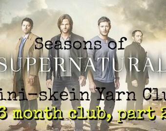 6 months - Seasons of Supernatural Mini Skein Club