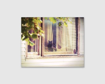 Black Cat in Window Wall Art, Wrapped Canvas Photo Print, Vintage Effect Style Pet Cat Photo