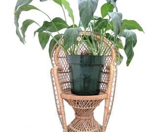 Vintage Rattan Plant Stand Mini Peacock Chair