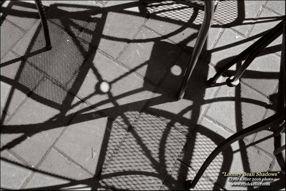 Looney Bean Shadows, coffee house, Clyde Keller 2016 photo