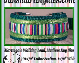 Jansmartingales, Collar and Leash Combination Walking Lead, Whippet, Medium Dog Size, wgrn103