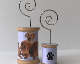 Yellow Labradors - Cool Spools