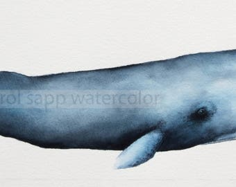 Sperm Whale archival print of original watercolor-whale art-whale painting-carol sapp-sperm whale art-marine life art-ocean art-shore decor