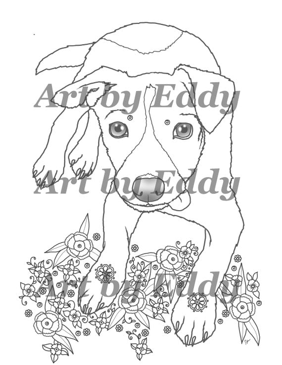jack russell coloring pages - photo#18