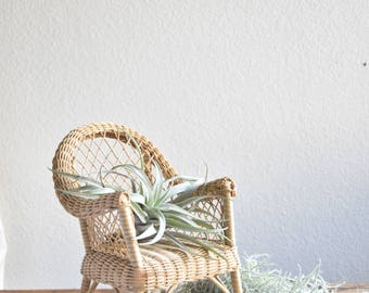 vintage wicker chair planter / plant stand / doll chair / boho chic / 1 chair