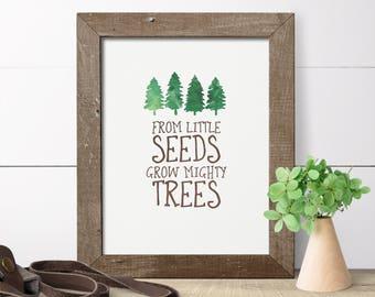 Nursery Wall Art - Woodland Nursery Decor -  Boy Nursery Decor - From Little Seeds Grow Mighty Trees - Camping Nursery - Art For Boys Room