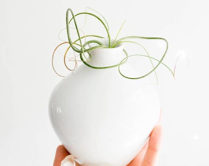 Mid Century Glazed White Porcelain Vase // Seltmann Weiden // Scandinavian Modern Home Decor // Minimalism // Modernist Christmas Gifts