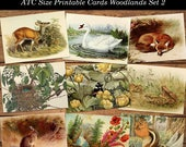Vintage Woodland Printable Digital Collage Sheet Set 2 Wild Flowers Animals of the Forest Instant Download ATC Size Cards JPG Format