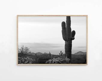 Cactus Desert Print, Mountain Printable Photography Wall Art, Desert Photo Black and White, Cactus Download, Southwestern Decor, d1bwl