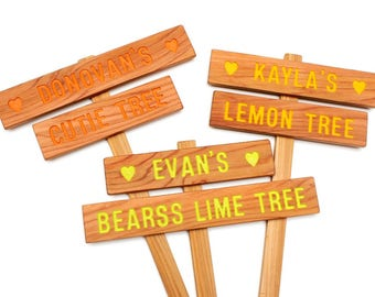 Personalized Tree Sign, Family Tree Marker, Grand kid Gift, Gift for him, Gift for her, Garden Decor, Tree Name Marker, Colorful Sign