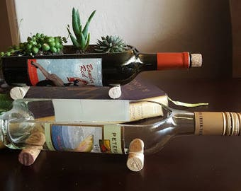 Glass succulent planter wine bottle garden wine gifts for How to cut glass bottles lengthwise