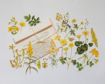 Botanical FlowerEphemera - 18 Die Cuts - Handmade Die Cuts - Botanics - Yellow - Handmade Vintage Bookpage Envelope