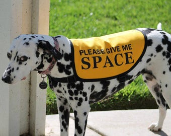 """Jacket Vest for Dogs Working on Issues - """"Please Give Me Space"""""""