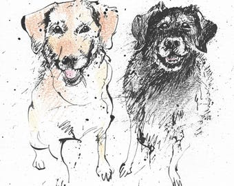 Old Lab Pals - Original pen & ink drawing with coloured pencil - A5 gift, dog mates, labrador friends, dogs, Black, golden besties, mates