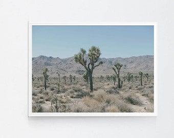 Joshua Tree, Cactus Print, Cactus Wall Art, Cactus Photography, Joshua Tree Print, Desert Cactus Print, Desert Wall Print, Desert Printable