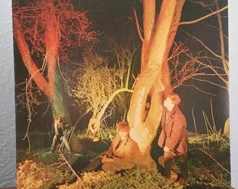 Echo & The Bunnymen – (ORIGINAL '80) Crocodiles LP