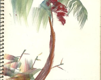 palm tree trees landscape artist sketchbook pages circa 1950s downloads