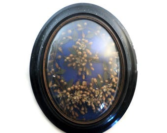 French Wedding Bouquet, Black Oval Wood Dome Framed Dried Flowers' Bride, Wax Orange Blossom