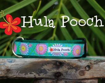 "Dog Collar ""Sunburst"" Lime Green Pink Turquoise  -  Medium, Large, Wide, Adjustable // FREE SHIPPING"