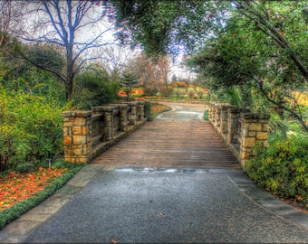 Poster, Many Sizes Available; Gfp Dallas Texas Bridge Walkway Arboretum