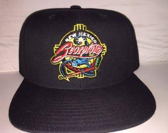 Vintage New Mexico Scorpions Hockey Snapback hat cap CHL rare 90s minor league deadstock