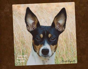 Rat Terrier, Rat Terrier Coasters, Rat Terrier Gift, Rat Terrier Art
