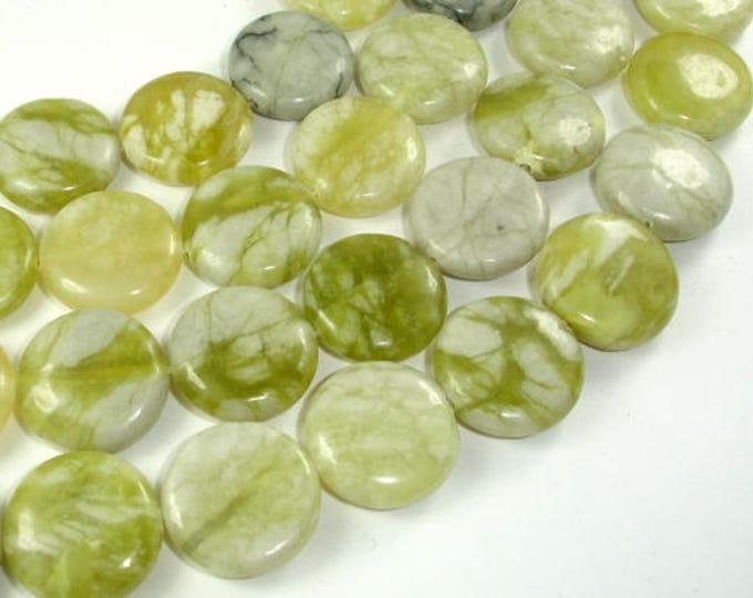 Jasper Beads, 20mm Coin Beads, 15.5 Inch, Full strand, 20 beads, Hole 1 mm (344008005)