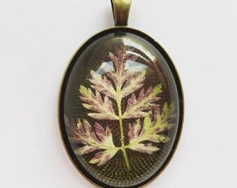 Médaillon type vintage et véritable végétal