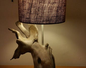 Very cool Driftwood lamp