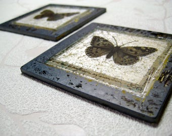 Butterfly Specimen Glass Coaster
