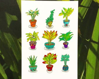 Potted Plant Postcard