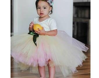Pink lemonade~Summer tutu~Birthday~Fruit tutu~Smash cake tutu