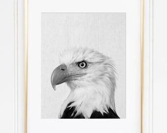 Bald Eagle Print, American Eagle Wall Art, Black And White Animal Print, Modern Minimalist, Bird Instant Download, Patriotic Printable