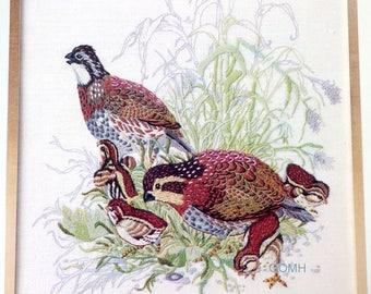 Bob White Quail Hallmark Cards Collection Vtg Crewel Embroidery Kit Linen Wool