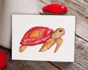 Postcard - Red turtle