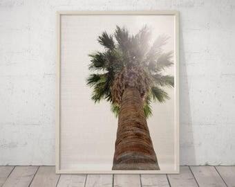 SALE Palm Tree Print, Tropical Wall Art, Palm Tree Decor, Tropical Wall Decor, Palm Tree Wall Art, Palm Tree Wall Decor, Tropical Modern Art